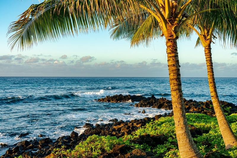 Hawaii 2019-25.jpg