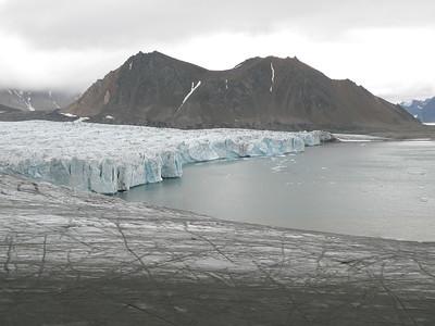 Isbjørnhamna