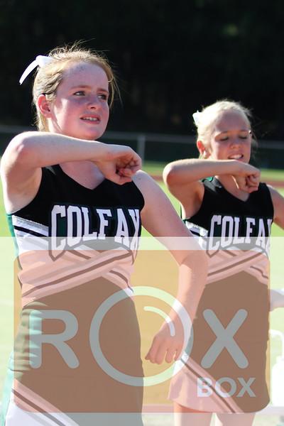 Cheer 2012