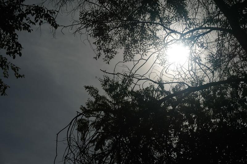 2017-08-20 Solar Eclipse 002.JPG