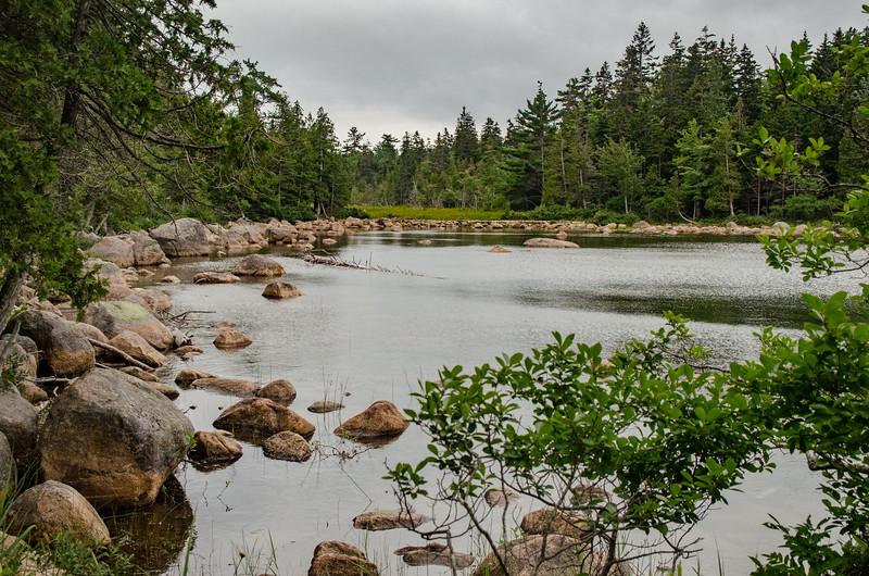 Acadia Nat'l Park-Terry's - July 2017-352.jpg