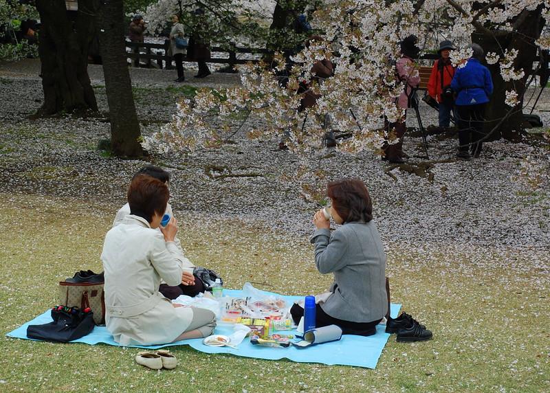 16-Japan07_1464.JPG