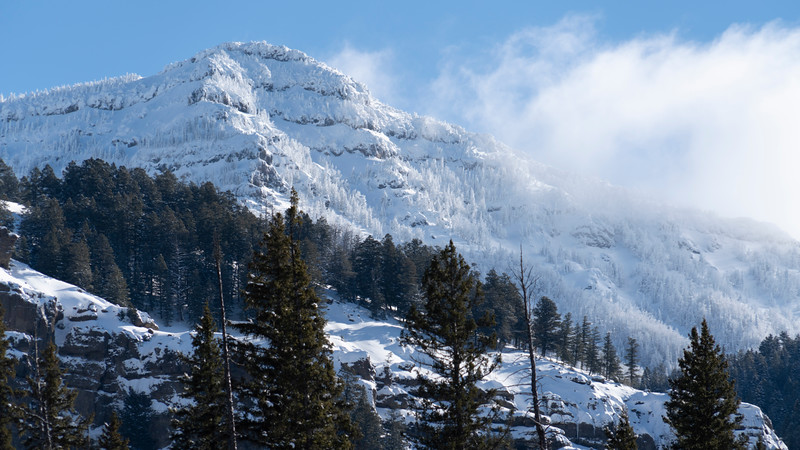_AR70937 Frosted pines on the mountain 16*9.jpg