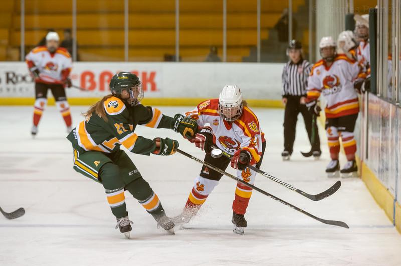 Hockey - Pandas vs Dinos