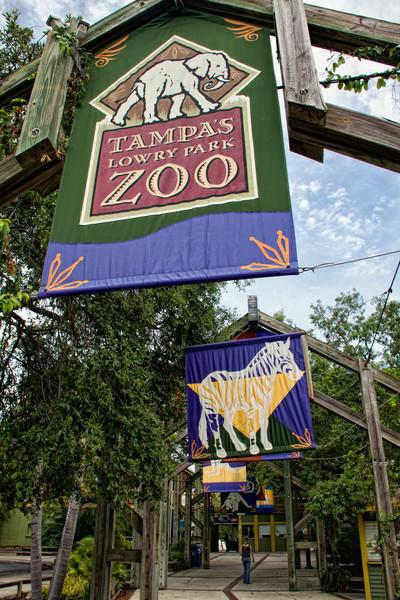 R_Tampa_Zoo-281-Edit.jpg