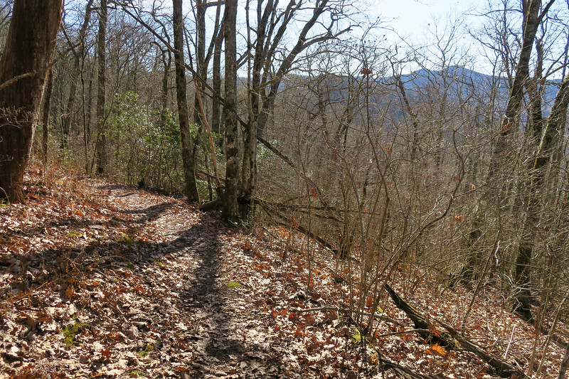 Mountains-to-Sea Trail -- 4,920'