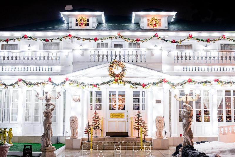 20161120-201621-Bruno Serato Tree Light-untitled-Premium-Paris.jpg