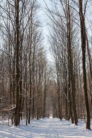 Le vallon du Kleine Flossendelle en hiver