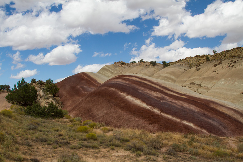 On the Burr Trail Road, Capitol Reef