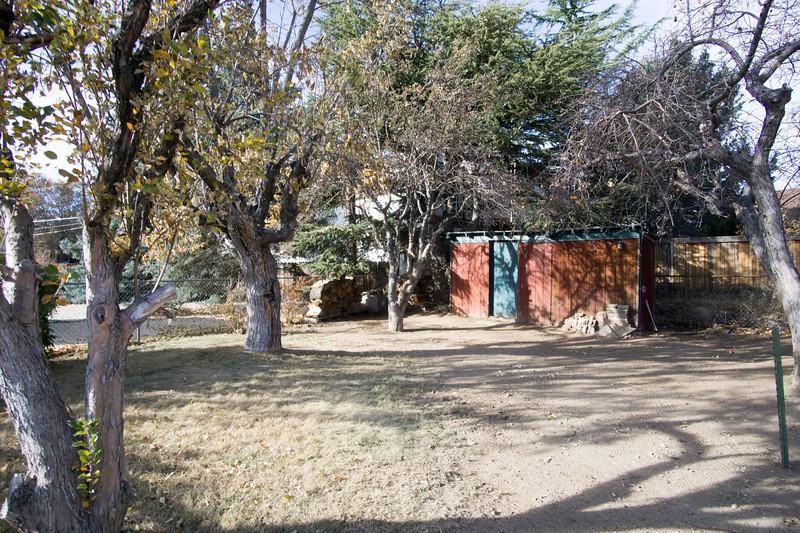 yard shed.jpg