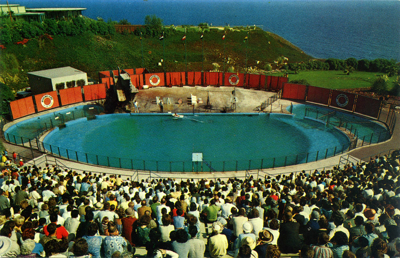 Marineland Sea Circus
