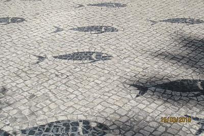 Armacao De Pera, Algarve [Vivienne]