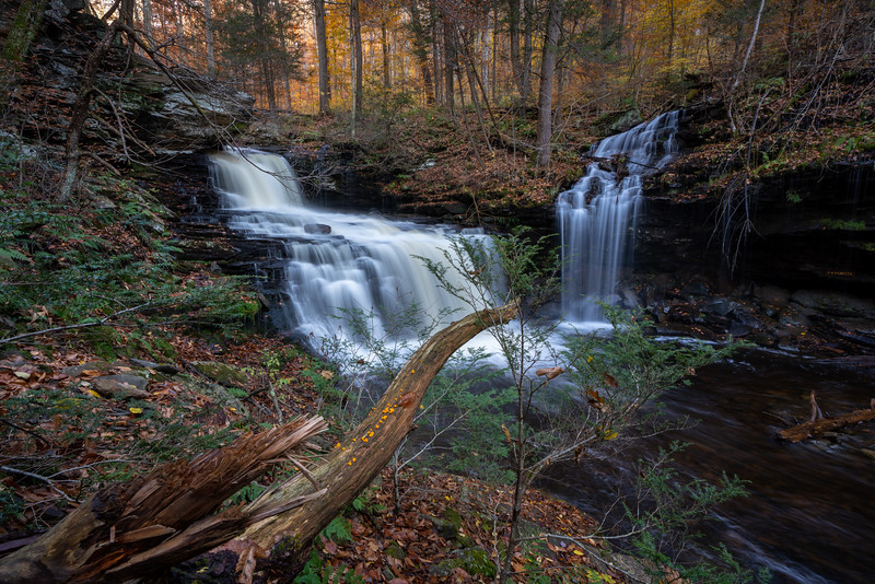 Ricketts Glen-5052.jpg