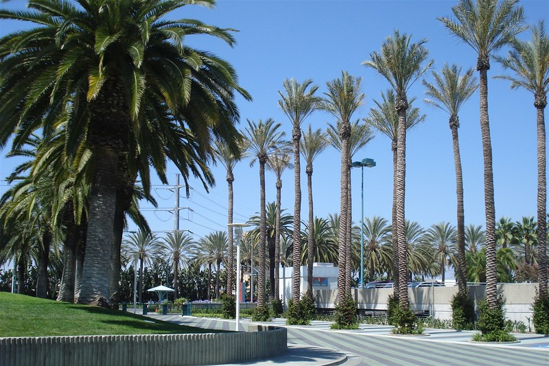 We walked to the convention center everyday.jpg