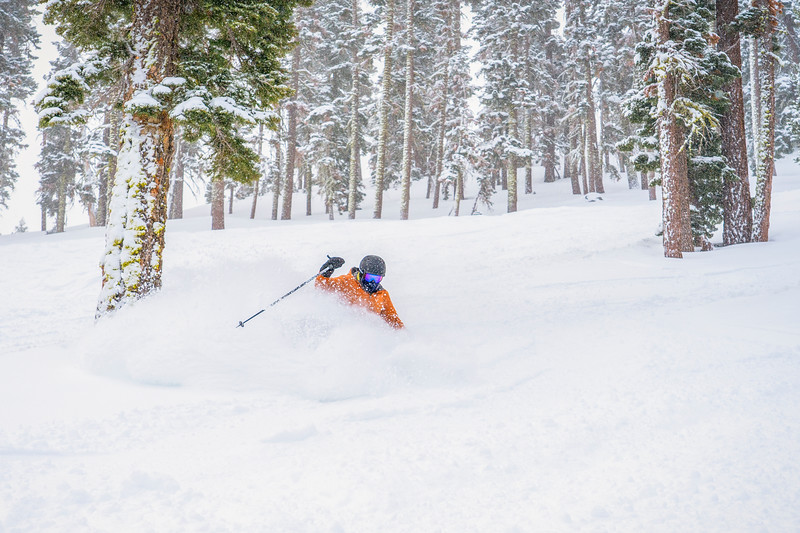 Powder skier Northstar