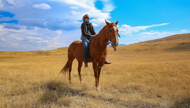 Lyn's horses 42a.jpg
