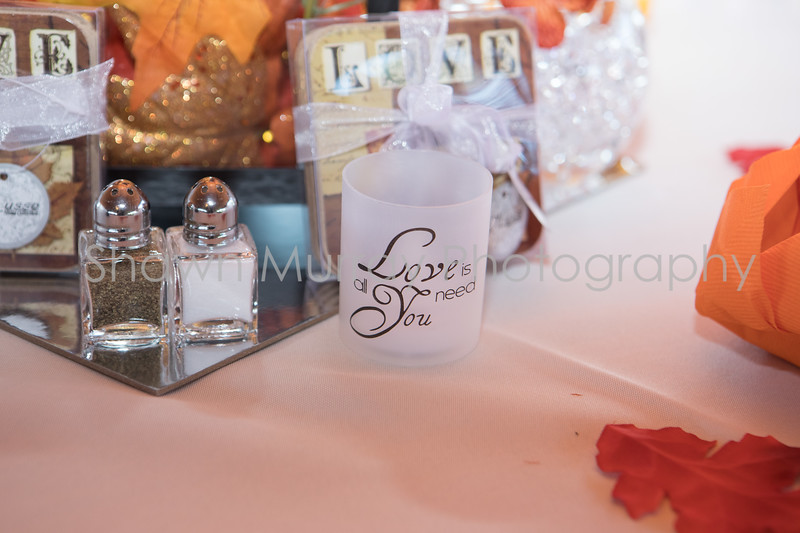 0523_Megan-Tony-Wedding_092317.jpg