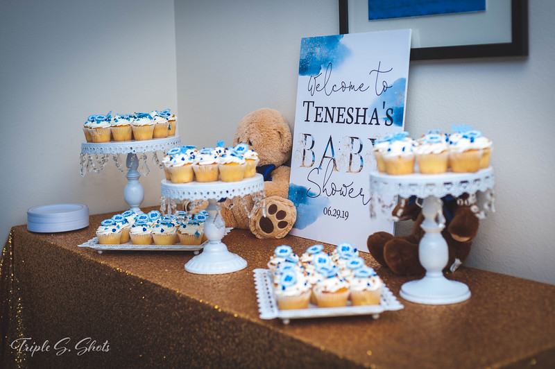 Mike and Tenesha Baby Shower-6.jpg