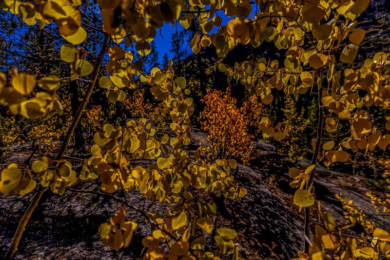 grotto-3.jpg