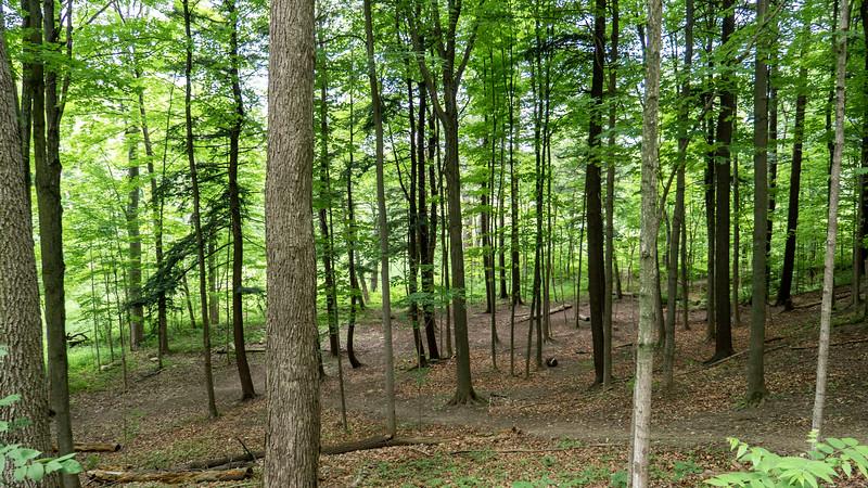 Ontario-Brampton-Claireville-Conservation-Area03.jpg