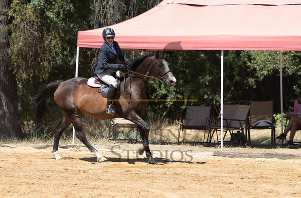 Rider 109- Hunters/Equitation