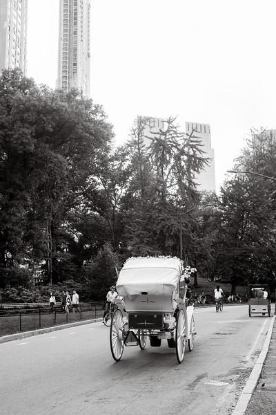 Central Park Wedding - Beth & Nancy-175.jpg
