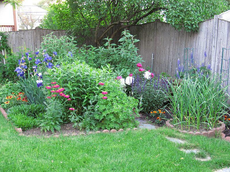 garden-2009-06-0726_std.jpg