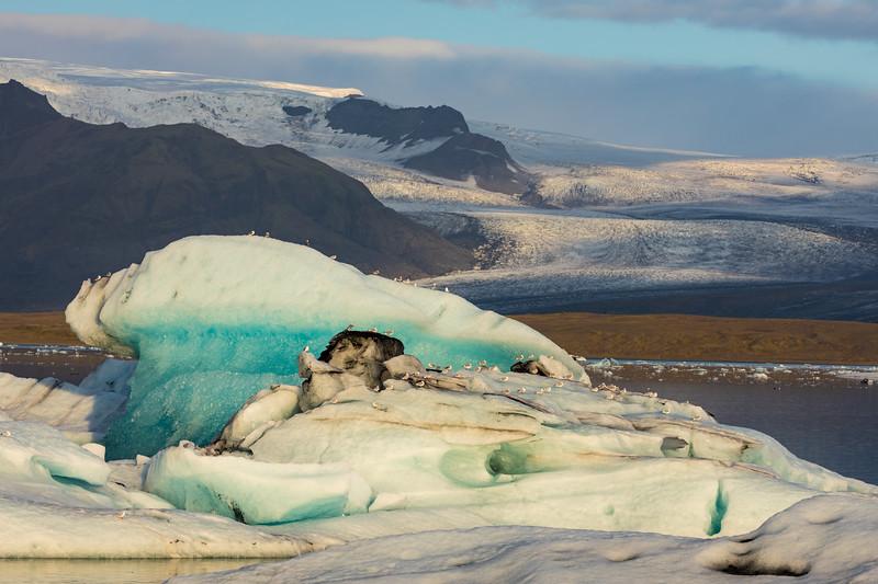 Iceland19_-2267.jpg
