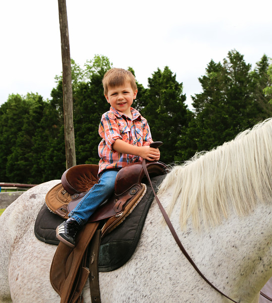 Saddle2.jpg