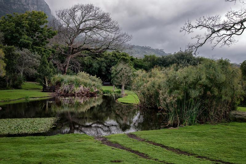 2014-08Aug26-Capetown-S4D-5.jpg