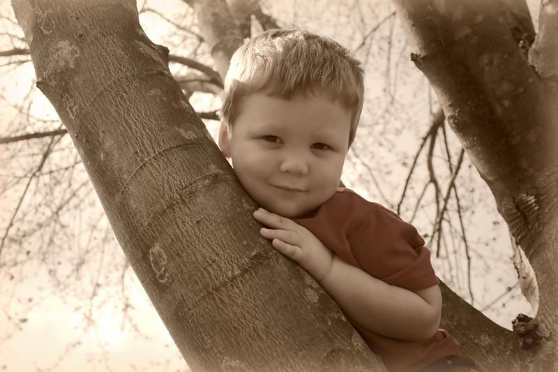Brady Sepia.jpg