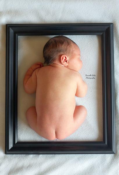 _4_website_newborns-41.jpg