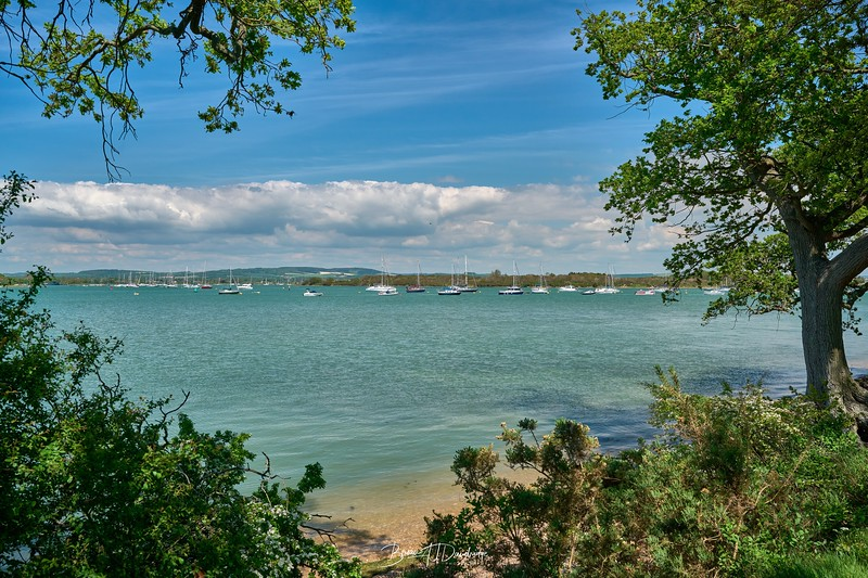 Chichester Harbour-8350 - 1-19 pm.jpg