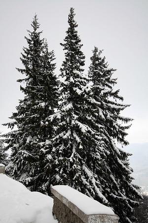 2009 Feb: Sinaia - Cota 1400