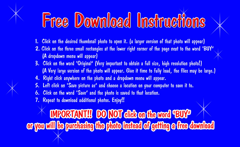 Free Download Instructions final.jpg