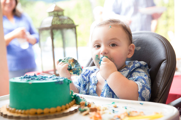 Noah First Birthday Party