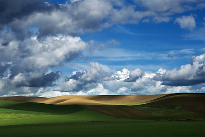 Palouse Workshop 2010