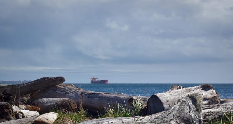 driftwood ship.jpg