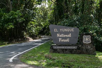 El Yunque, Fajardo, Luquillo