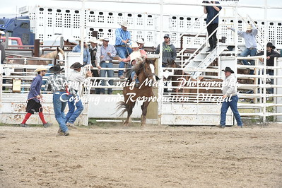 SADDLE BRONC PREF 6-26-2016