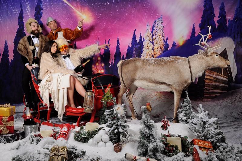 phototheatre reindeer christmas 5.jpg