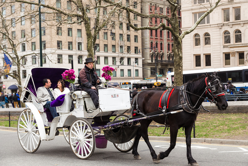 Jonna & Jason - Central Park Wedding 015  .jpg
