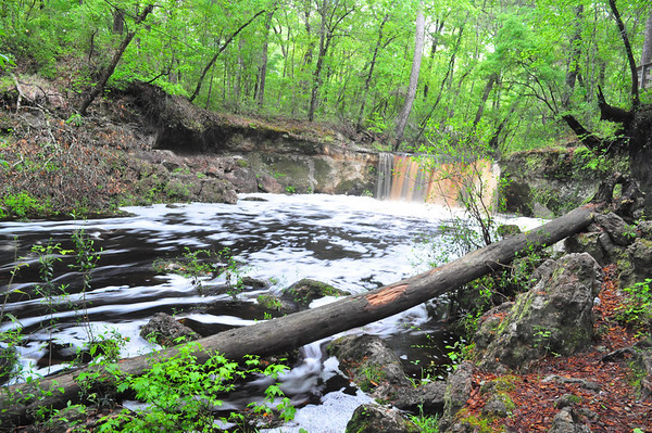 Falling Creek in late March