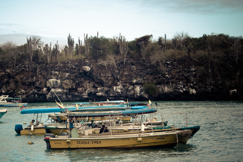 puerto ayora water taxis.jpg