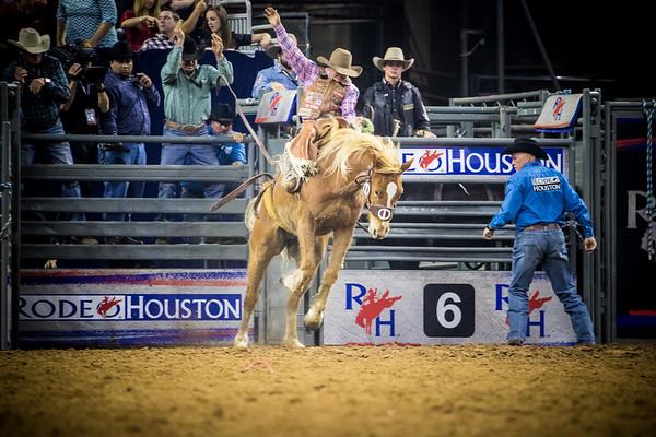 Saddle Bronc 2017