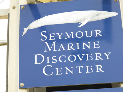 131107 Seymour Marine Discovery Center FT