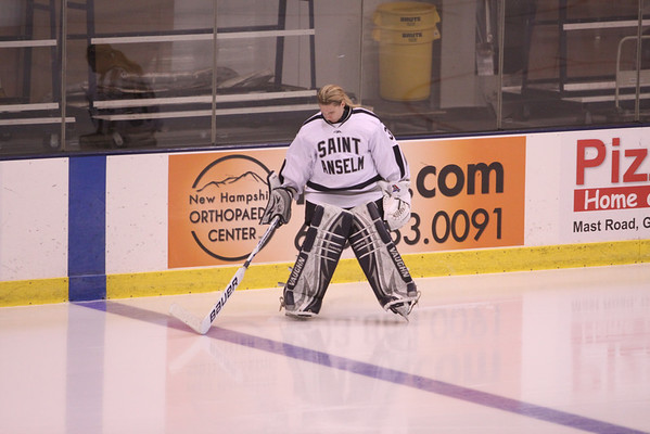 Saint Anselm Hockey 2013-2014
