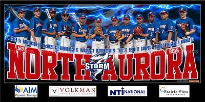 2019 12U Thill Aurora Storm