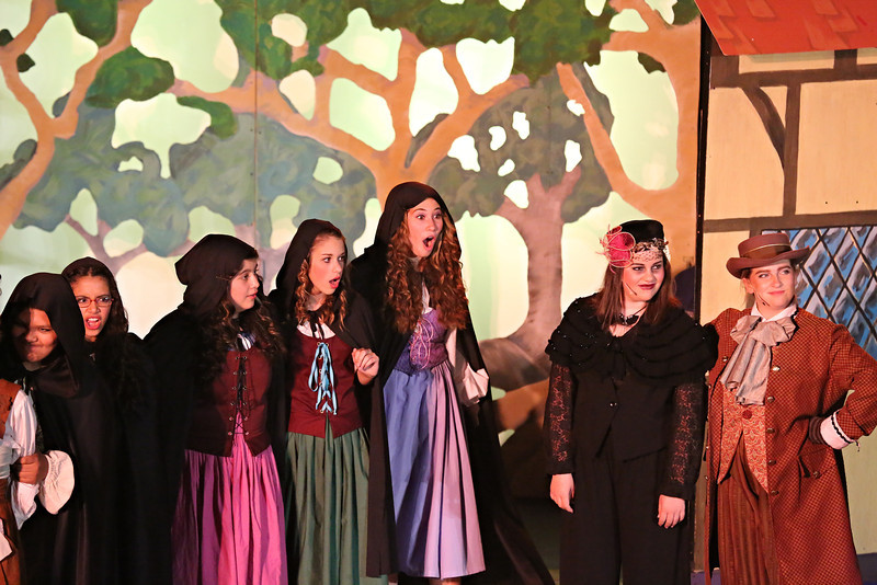 Debbie Markham Photo-Closing Performance-Beauty and the Beast-CUHS 2013-247.jpg