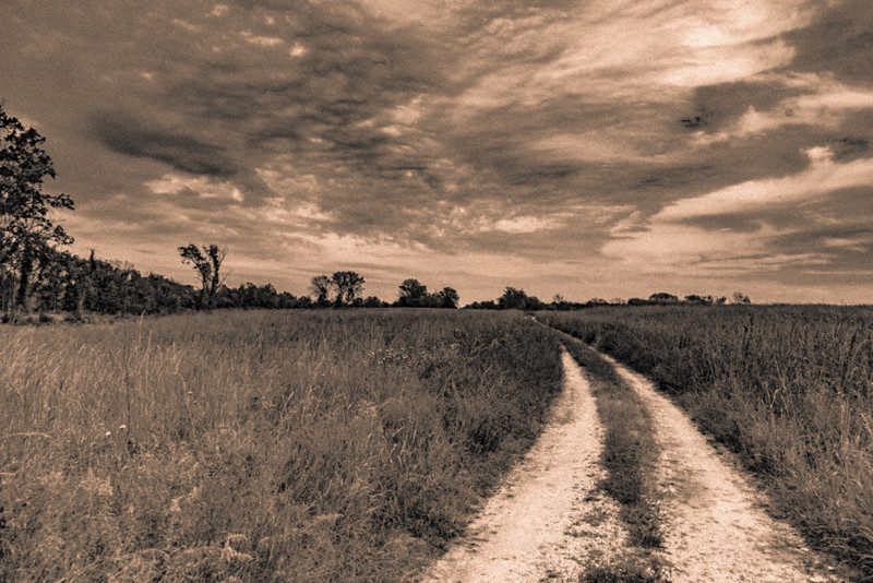 Prairie  39